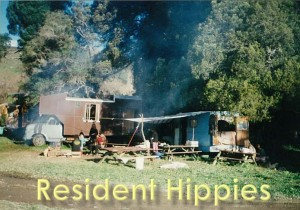 Resident Hippies